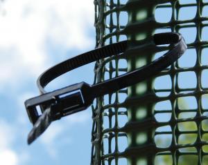 Vorfixierte Kabelbinder für eine schnelle und einfache Befestigung am Pflanzpfahl