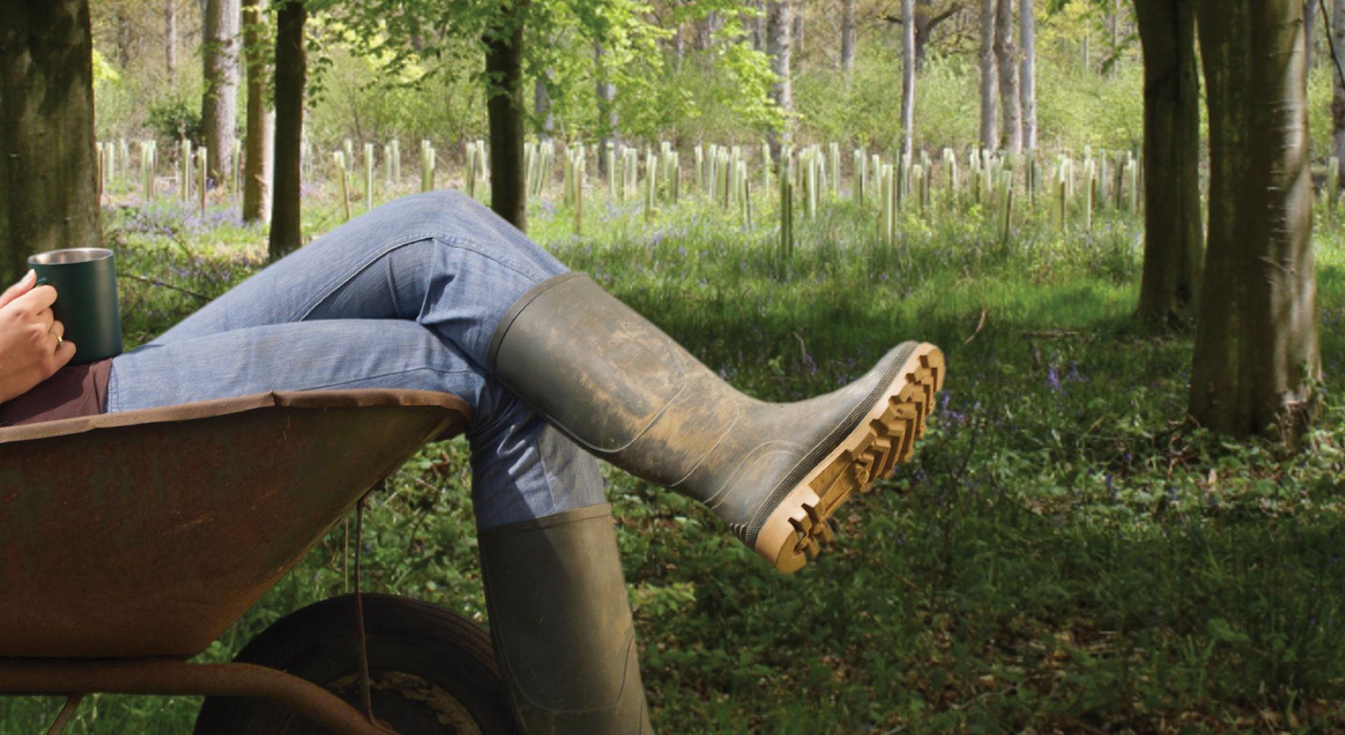 Baum- und Pflanzenschutz