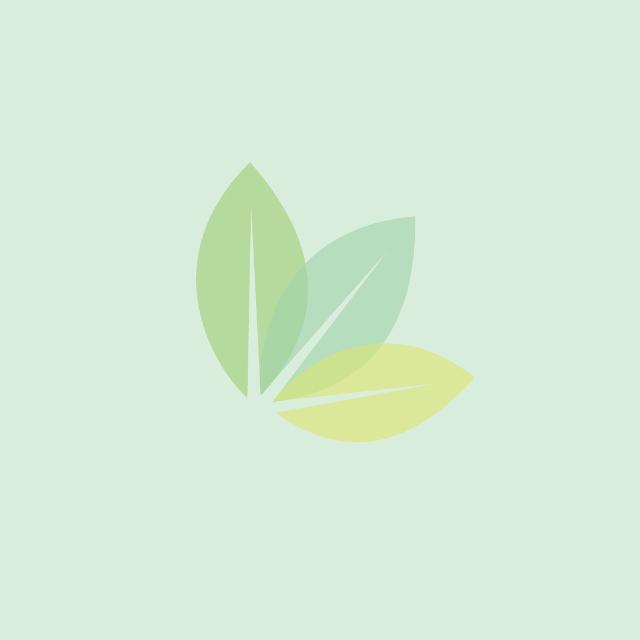 Netzschutzschlauch Light, Ø 75-125mm, 25m grün