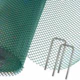 TurfProtecta® Premium, 2m x10m, grün PLUS 100 Befestigungshaken